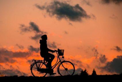 Uchwyty rowerowe na telefon – akcesorium pomocne w trasie